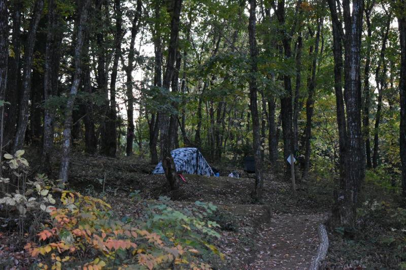 飛騨市森林公園キャンプ場のサイト