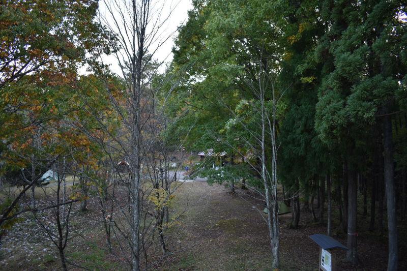 飛騨森林公園キャンプ場のサイト