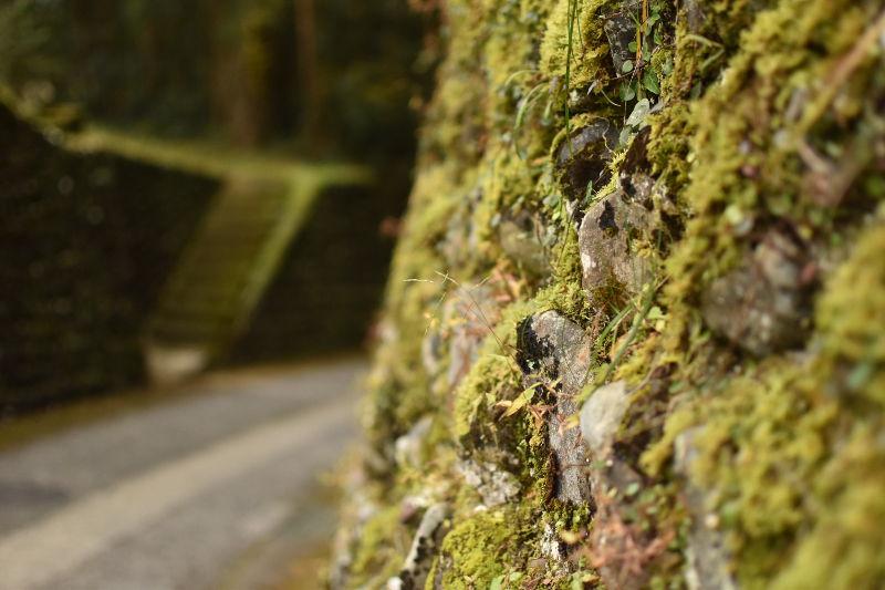 熊野本宮大社周辺1