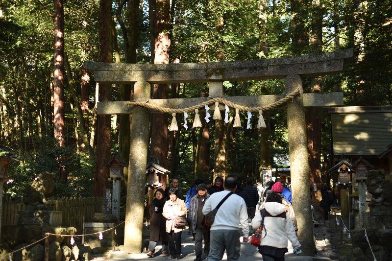 椿大神社の混雑2