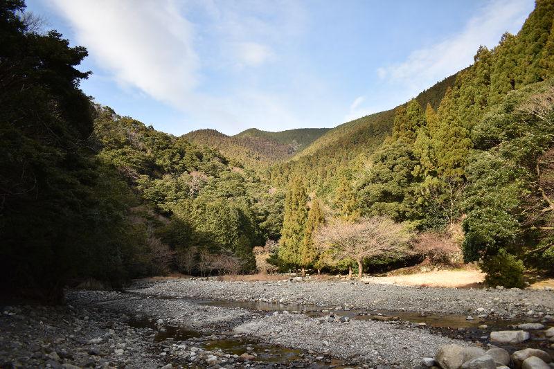 宇賀渓キャンプ場のサイト全体
