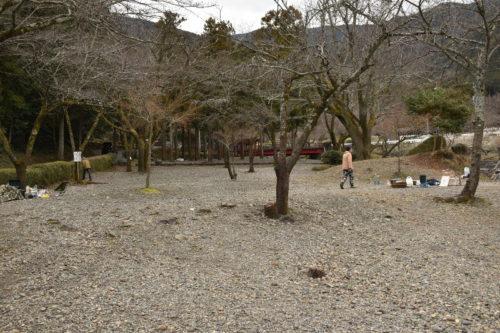大津谷公園キャンプ場西側サイト