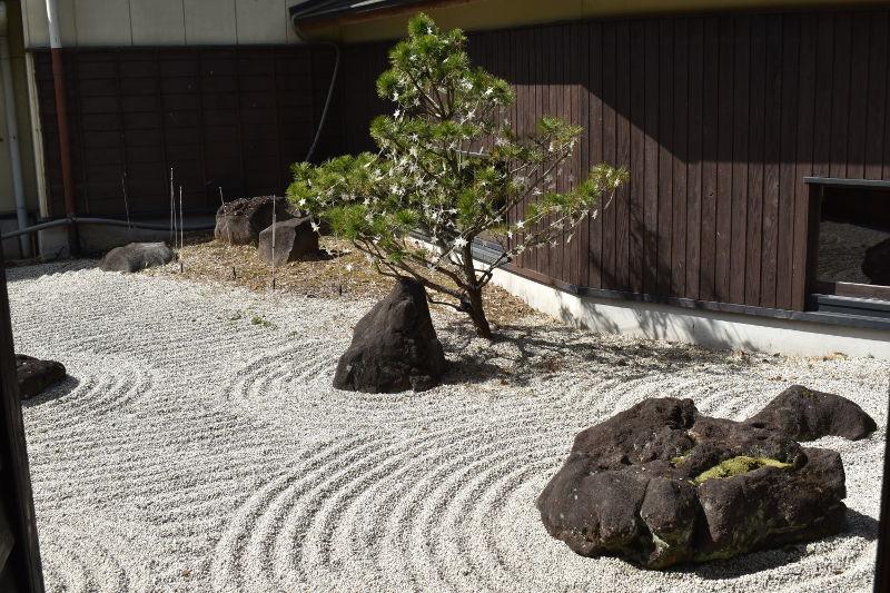 川根温泉の庭