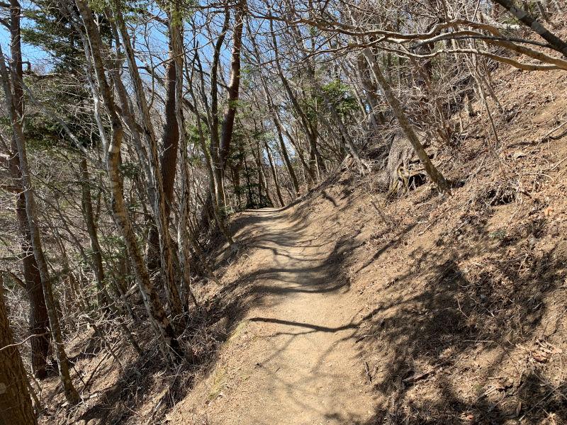 中ノ倉峠の登山道