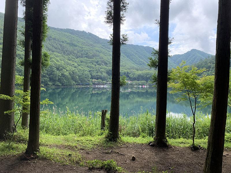 四尾連湖水明荘の林間サイト