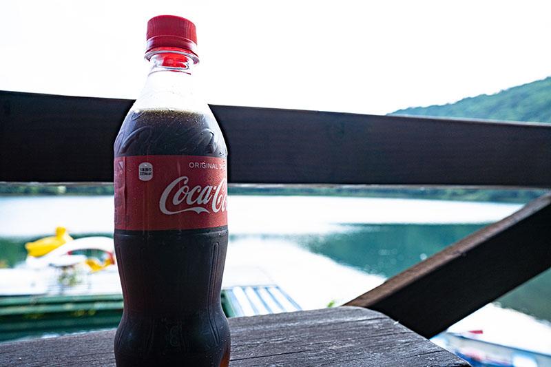 四尾連湖水明荘でコーラ