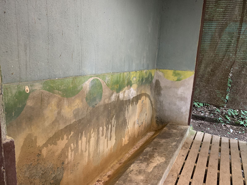 四尾連湖水明荘のトイレ